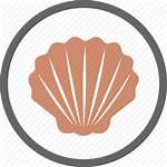 Icon Seashell Shell Shellfish Icons Contains Label