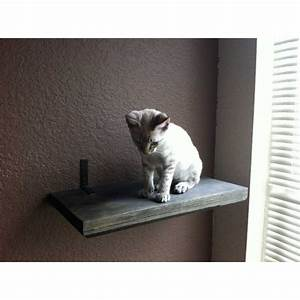 Catastrophicreations, Stained, Wooden, Cat, Wall, Shelf