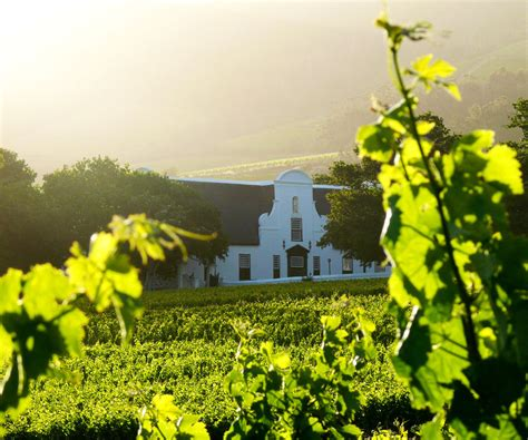 Groot Constantia rated as Top South African Wine Producer ...