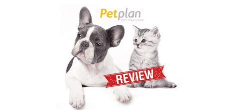 141,621 likes · 847 talking about this. Petplan Reviews 2017 Update: Compare Cost & Coverage