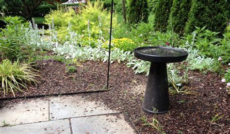 garden dilemma the bird feeders garden rant