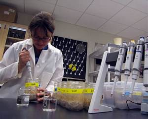 UNH Research Finds Microbial Traits, Not Plants, Determine ...