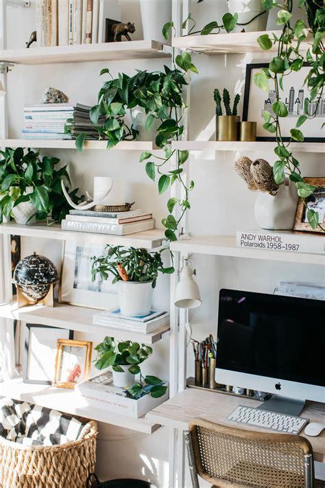pinspiration urban jungle vibes apartminty
