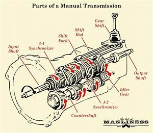 Parts Of A Manual Transmission Illustration Diagram