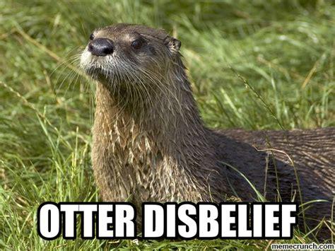 Otter Memes - otter disbelief