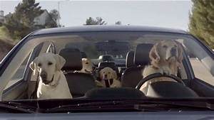 subaru dog mercials 2014