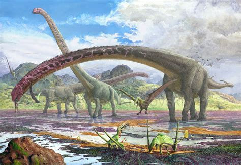 Mamenchisaurus By Atrox1deviantartcom On Deviantart