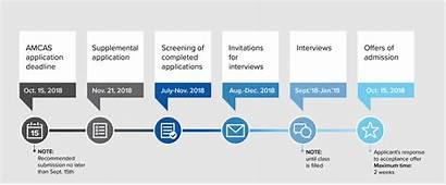Timeline Admissions Md Ucla Program Admission Medicine