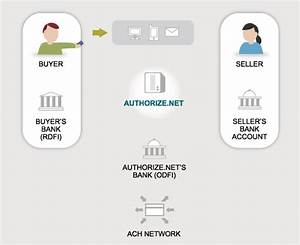 How Echeck Works  Electronic Check Payment Process Diagram