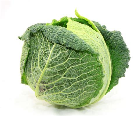 cuisiner un chou vert chou vert frisé légumes