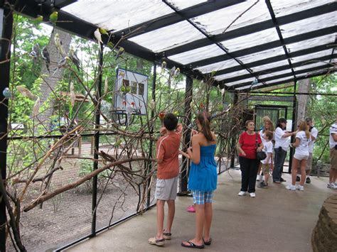 birds park potter zoo exhibit visitors under animal lansing down wings exhibits enjoy mlive shade kalamazoo inner feed living sign