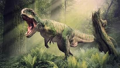 Spinosaurus Rex Wallpapers Dinosaurs Wallpaperplay