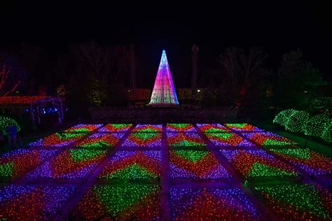 in photos nc arboretum s second annual winter lights
