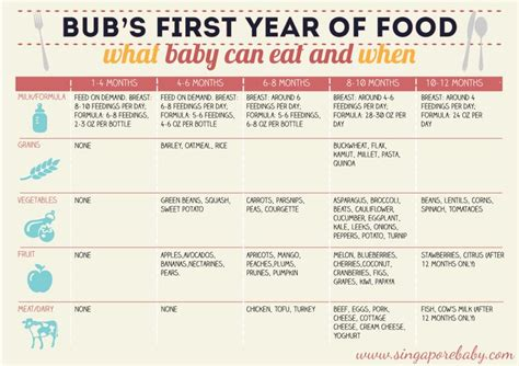 baby food chart  baby  eat    months plan pinterest charts babies