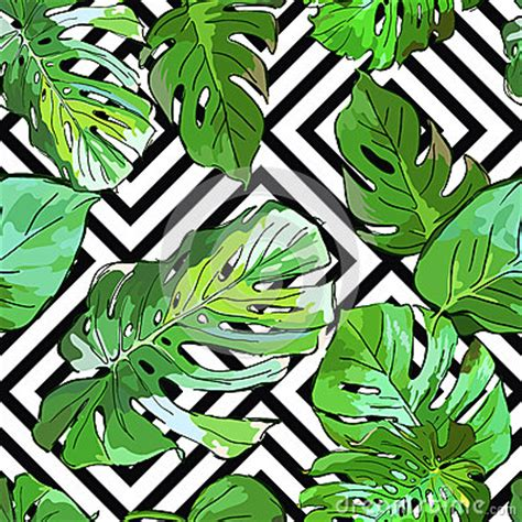 green palm tree leaves  black  white geometric