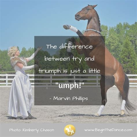 horse quotes andalusian gelding beaulieu horses success quote lipizzan sandra training begin dance motivational performing trick spirit equine chason kimberly