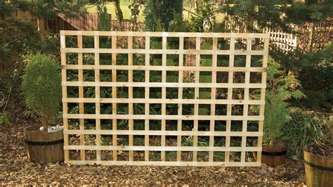 Trellis Fencing by Heavy Trellis Earnshaws Fencing Centres