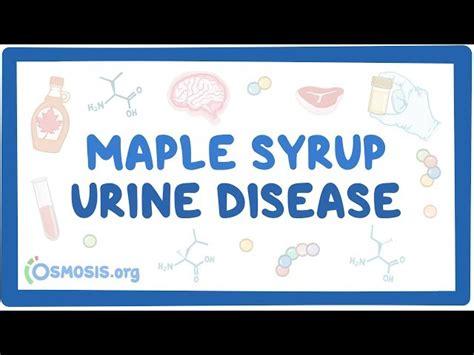 maple syrup urine disease  symptoms diagnosis