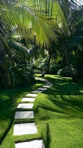 Une Alle De Jardin De Rve Roselia GardenRoselia Garden