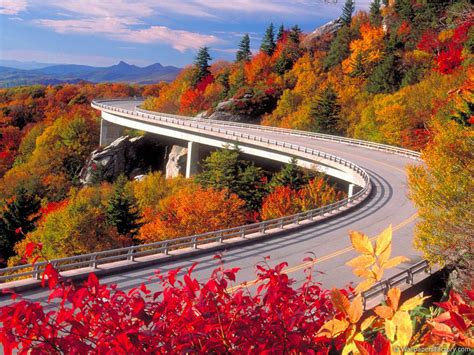 autumn road nature wallpapers wallpapers high