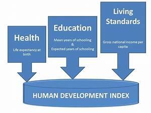Human Development Index Components