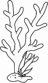Coloring Seaweed Coral Reef Printable Drawing Ocean Drawings Colouring Sketchite Sketch Nature Crafts sketch template