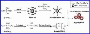 Schematic Illustration Of Hydrophobic Modification Of