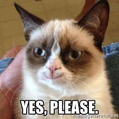 Yes Please Meme - yes please grumpy cat smile meme generator