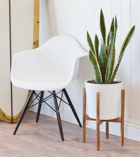 build  midcentury inspired plant stand hunker