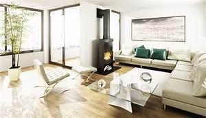 Ofen Für Wohnzimmer : der ofen typen funktionsweise und kauftipps ~ Sanjose-hotels-ca.com Haus und Dekorationen