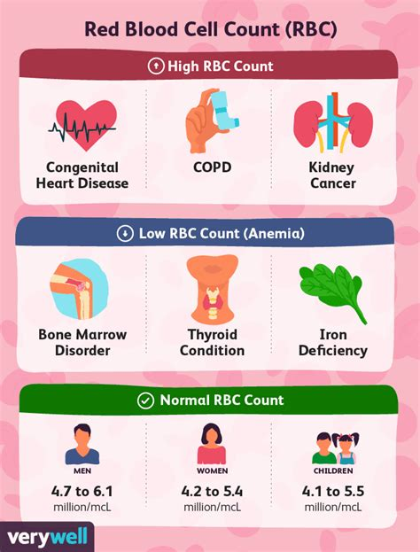 Although blood tests are important and often necessary, without insurance they can be quite costly. Understanding the Red Blood Cell (RBC) Count
