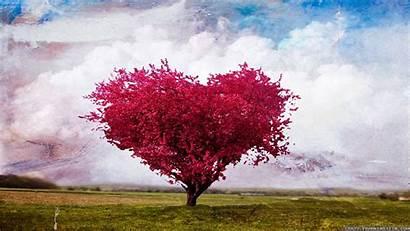 Tree Wallpapers Heart Birthday Happy Shaped Frankenstein