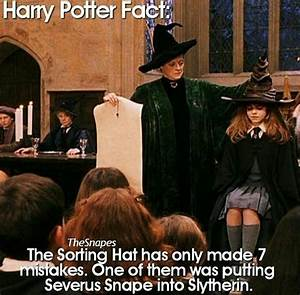 Harry Potter Randomness • - The sorting hat's mistake ...