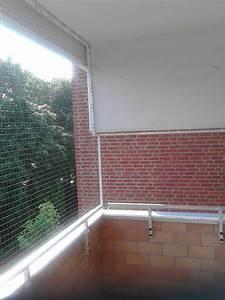 Katzennetz Balkon Unsichtbar : eine unauff llige fast nicht sichtbare balkonvernetzung in hamburg katzennetze nrw der ~ Orissabook.com Haus und Dekorationen