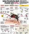 23 best images about Ecology and Pests on Pinterest | Kale ...