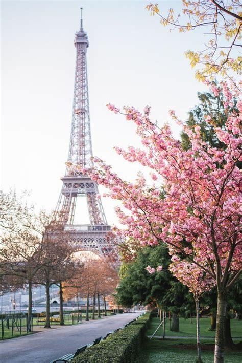 Best 25+ Pink Paris Ideas On Pinterest  Paris Love, Paris