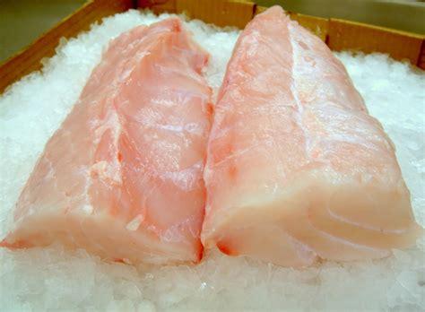 grouper fish taste fillet benefits nutritional