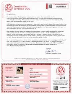 copouts how do i get my dog certified as a therapy dog With service dog letter for airline