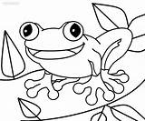 Coloring Pages Toad Frog Print Printable Paper Sketch Cool2bkids Within Cute Super Toads Animals Getcoloringpages Popular Template Neo sketch template