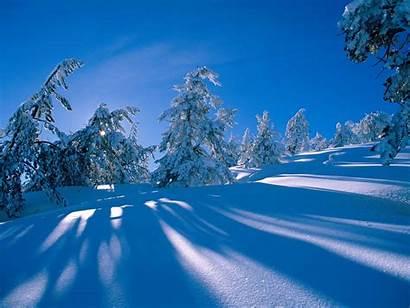 Snow Desktop Wallpapers Winter Backgrounds Bonewallpaper Computer
