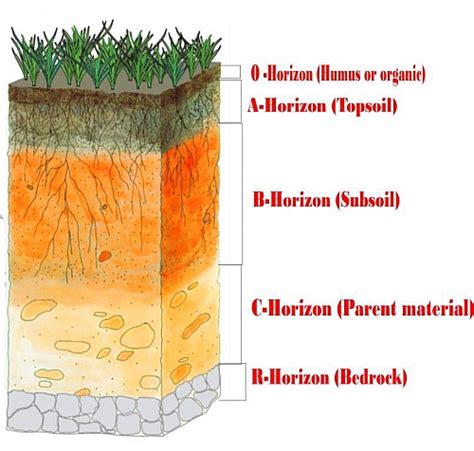 Layers Soil Definition Description With Diagram