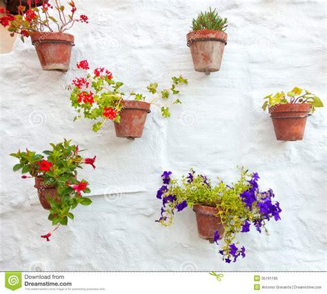 foto vasi di fiori vasi di terracotta con i fiori variopinti appendono