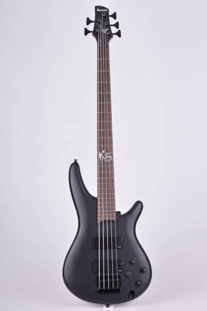 ibanez k5 fieldy signature 5 string great bass with reverb