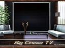 Pralinesims' Big Cinema Tv