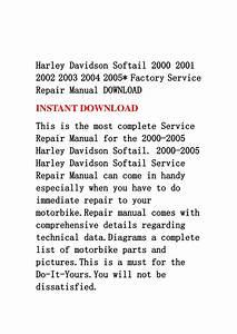 Harley Davidson Softail 2000 2001 2002 2003 2004 2005