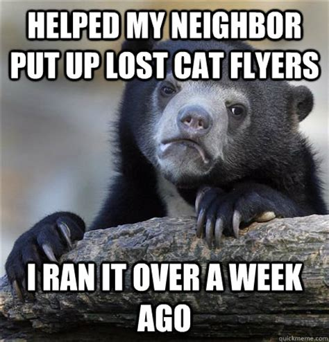 Lost Cat Meme - helped my neighbor put up lost cat flyers i ran it over a