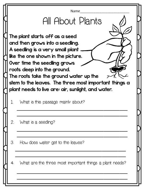 grade nonfiction reading comprehension worksheets