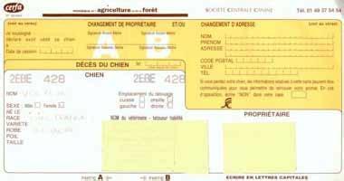 L'identification Du Chien Chassons
