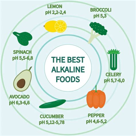 Getting The Acid Alkali Balance Right On The Raw Food Diet