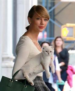 Which Of Taylor Swift's Cats Are You? | Swift, Taylor ...